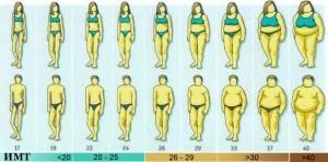Рассчитать индекс массы тела