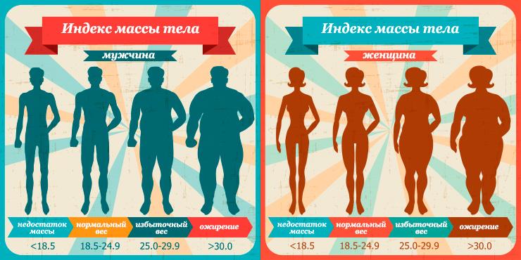 Что означает индекс массы тела