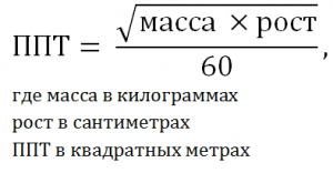 Площадь поверхности тела человека